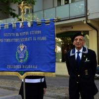 Foto Nicoloro G.  10/05/2015  Ravenna    Diciannovesimo raduno nazionale dei Marinai d' Italia. nella foto un veterano.
