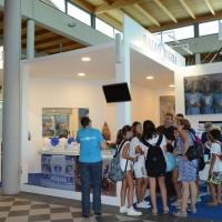 Foto Nicoloro G. 19/08/2018 Rimini Edizione 2018 del Meeting di C.L. che quest' anno ha per tema ' Le forze che muovono la storia sono le stesse che rendono l' uomo felice '. nella foto uno stand.