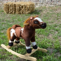 Foto Nicoloro G. 09/09/2017 Ravenna Primo raduno nazionale ' Cavalli a dondolo '. Un' iniziativa culturale e ludico-ricreativa nata per promuovere la cultura del gioco. nella foto uno dei cavalli a dondolo esposti e a disposizione dei bambini.