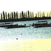 Foto Nicoloro G.  07/09/2014   Ravenna   Giornata conclusiva della nona edizione dell' IDBF,  Campionati Mondiali per club di Dragon Boat. Partecipano 27 nazioni, 5300 atleti, 129 club che gareggeranno nelle tre categorie Open maschili, femminili e mist…