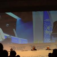 Foto Nicoloro G.   16/10/2015    Milano  In occasione della Giornata Mondiale dell' Alimentazione si e' svolto in Expo un incontro al quale hanno preso parte il Capo di Stato e il segretario generale delle Nazioni Unite. nella foto il delegato della Santa Sede monsignore Fernando Chica Arellano.