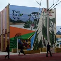 Foto Nicoloro G.   05/05/2015    Milano   Expo Milano 2015 si apre al mondo e si mette in mostra. nella foto il padiglione della Tanzania.