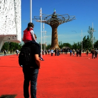 Foto Nicoloro G.   05/05/2015    Milano   Expo Milano 2015 si apre al mondo e si mette in mostra. nella foto uno sguardo all' Albero della Vita.