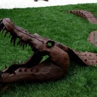 Foto Nicoloro G.   05/05/2015    Milano   Expo Milano 2015 si apre al mondo e si mette in mostra. nella foto la sagoma di un coccodrillo affiora dall' erba.