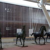 Foto Nicoloro G.   05/05/2015    Milano   Expo Milano 2015 si apre al mondo e si mette in mostra. nella foto i cavalli di Eatily.