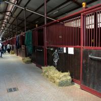 Foto Nicoloro G.  09/04/2015   Coriano ( Rimini )  La Comunità di San Patrignano, fondata nel 1978, è una Organizzazione Non Governativa autogestita che accoglie e assiste attualmente circa 1300 tra ragazzi e ragazze. nella foto l' interno della scuderia con i box per i cavalli.