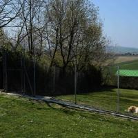 Foto Nicoloro G.  09/04/2015   Coriano ( Rimini )  La Comunità di San Patrignano, fondata nel 1978, è una Organizzazione Non Governativa autogestita che accoglie e assiste attualmente circa 1300 tra ragazzi e ragazze. nella foto ampi spazi a disposizione degli ospiti del canile.