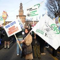 Foto Nicoloro G. 22/01/2012 Milano Manifestazione con corteo della Lega Nord contro il governo Monti. nella foto Manifestanti con cartelli lungo il corteo