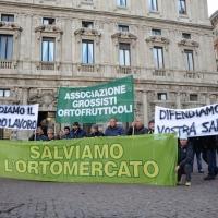 Foto Nicoloro G. 23/11/2011 Milano Manifestazione davanti a palazzo Marino degli operatori ortofrutticoli per l' auspicata riqualificazione dell' Ortomercato. nella foto Manifestanti e striscioni in Piazza della Scala