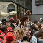 Foto Nicoloro G.   26/05/2019    Milano   Raduno di cani bassotti per una ' Sausage walk ' in pratica una passeggiata con i loro padroni. nella foto e' la loro giornata di festa.