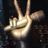 """Foto Nicoloro G. 10/03/2014 Milano Presentazione della seconda edizione della trasmissione di Rai 2 """" The Voice of Italy """". nella foto il simbolo della trasmissione."""